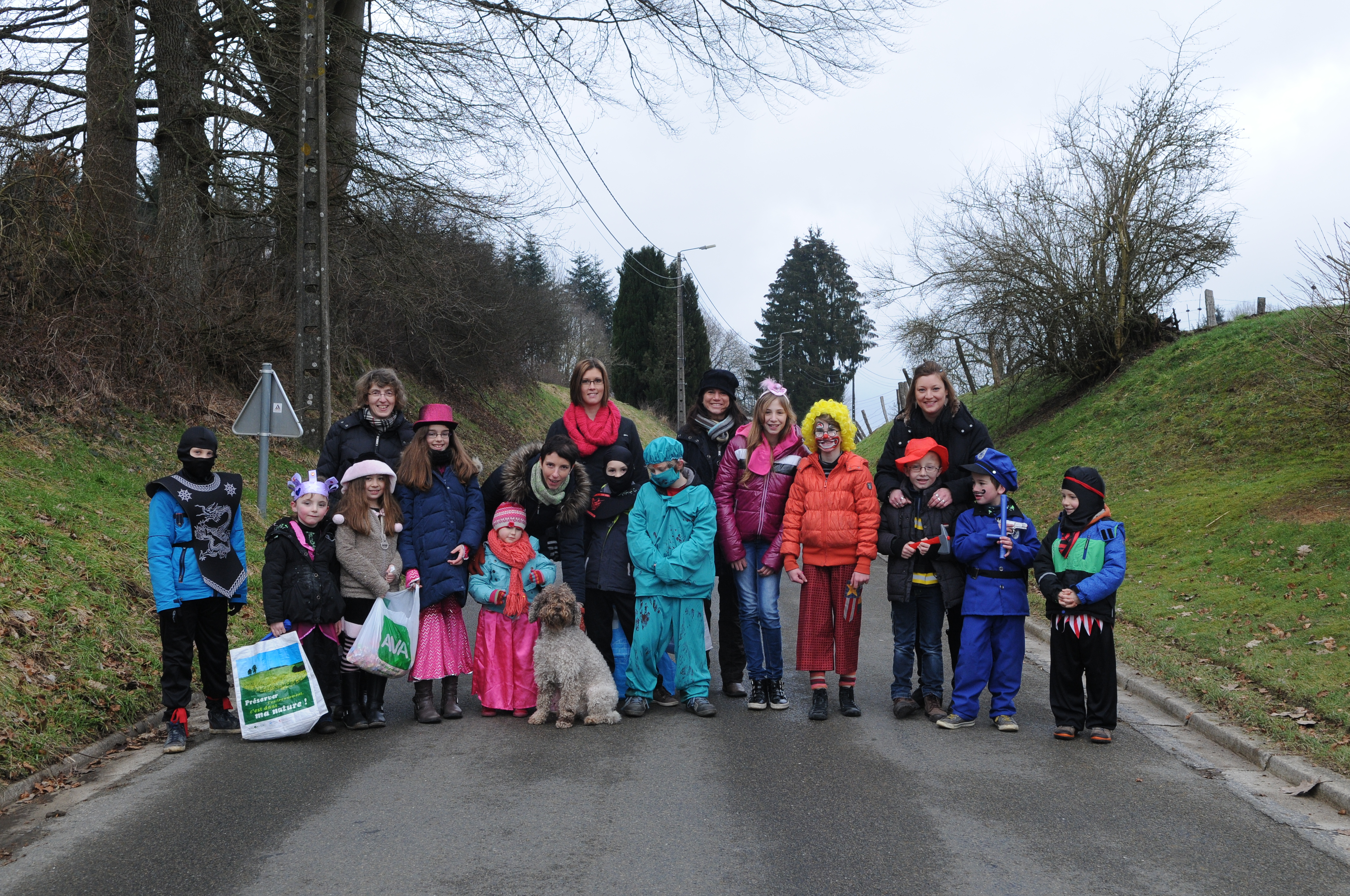 Carnaval des enfants 17 fév 2015.JPG
